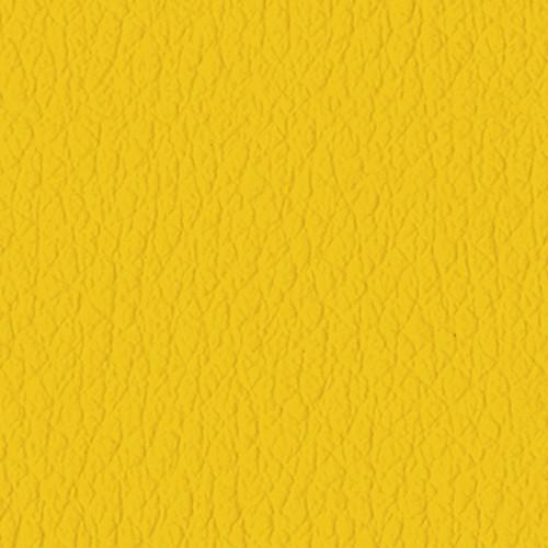 22_4740-Sunflower- quadrato