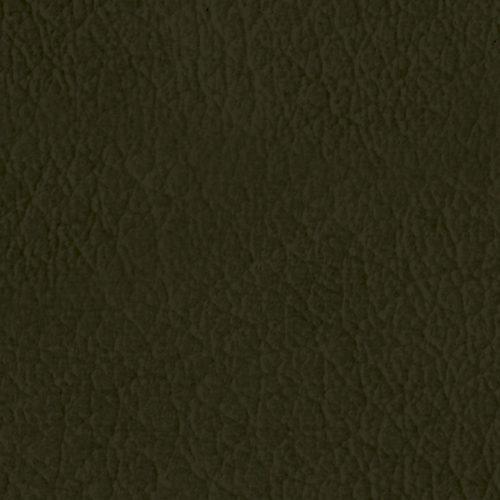 L92_Olive-quadrata