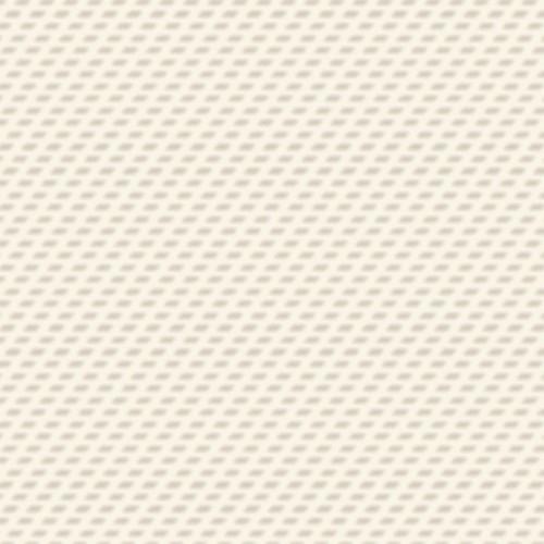 GZ65_AD Nevada White-quadrata
