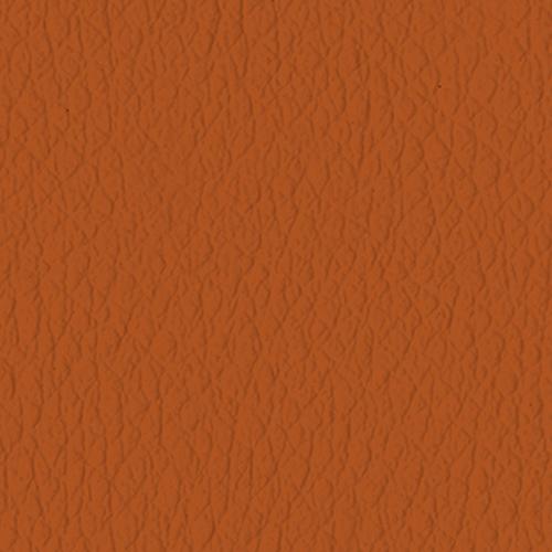P90_4741_Tangerine-quadrata-500x500