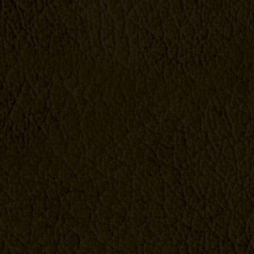L09_Ibex-quadrata