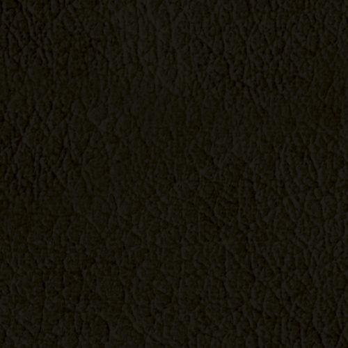 L43_Grizzly-quadrata