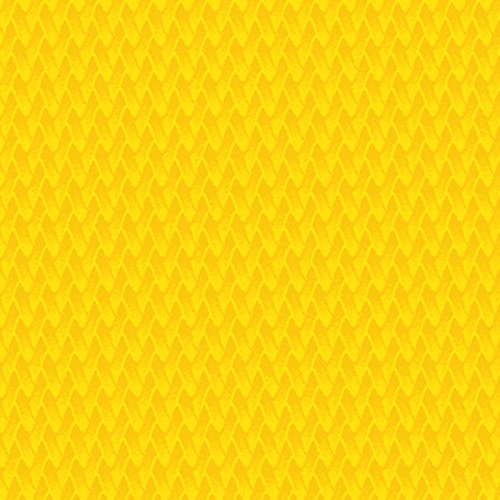 4872_AA_Tweety Yellow-quadrata