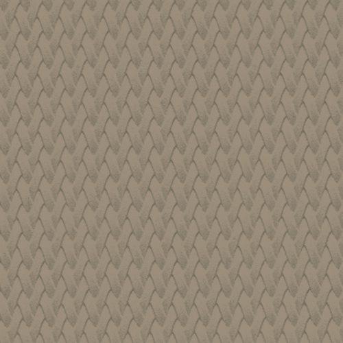GZ67_AA_Gobi-quadrata