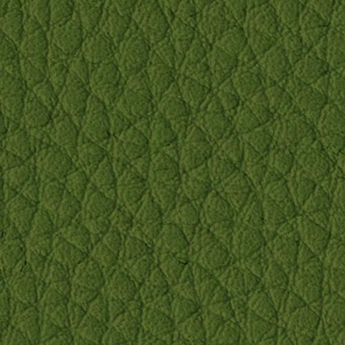 5031_Lichen-quadrata