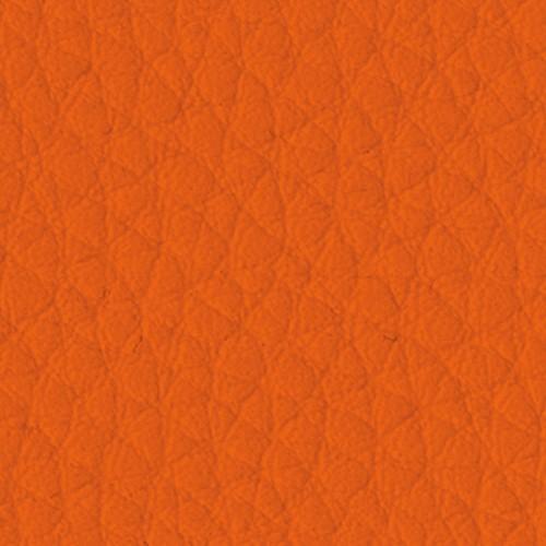 5032_Carrot-quadrata